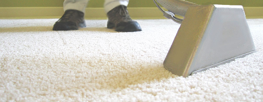 green carpet cleaning before u0026 after photos