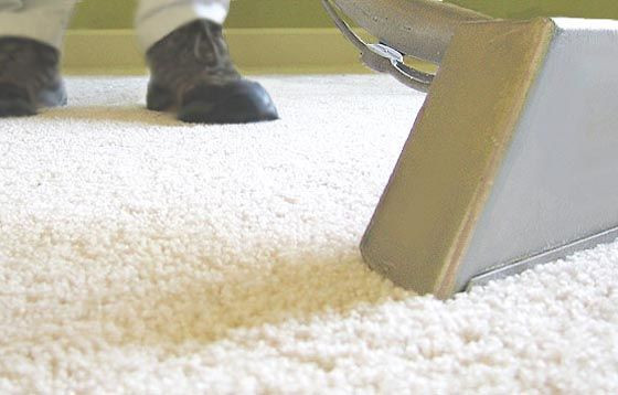 Keep your carpet smelling fresh and clean